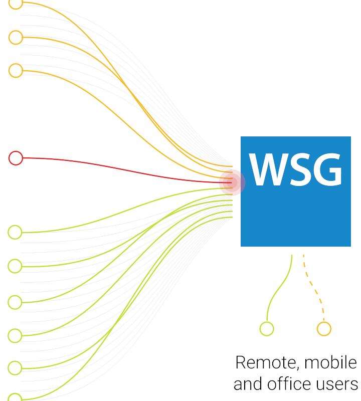 WSG-1
